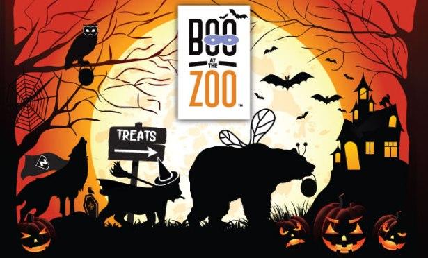 Boo-2015-web.jpg