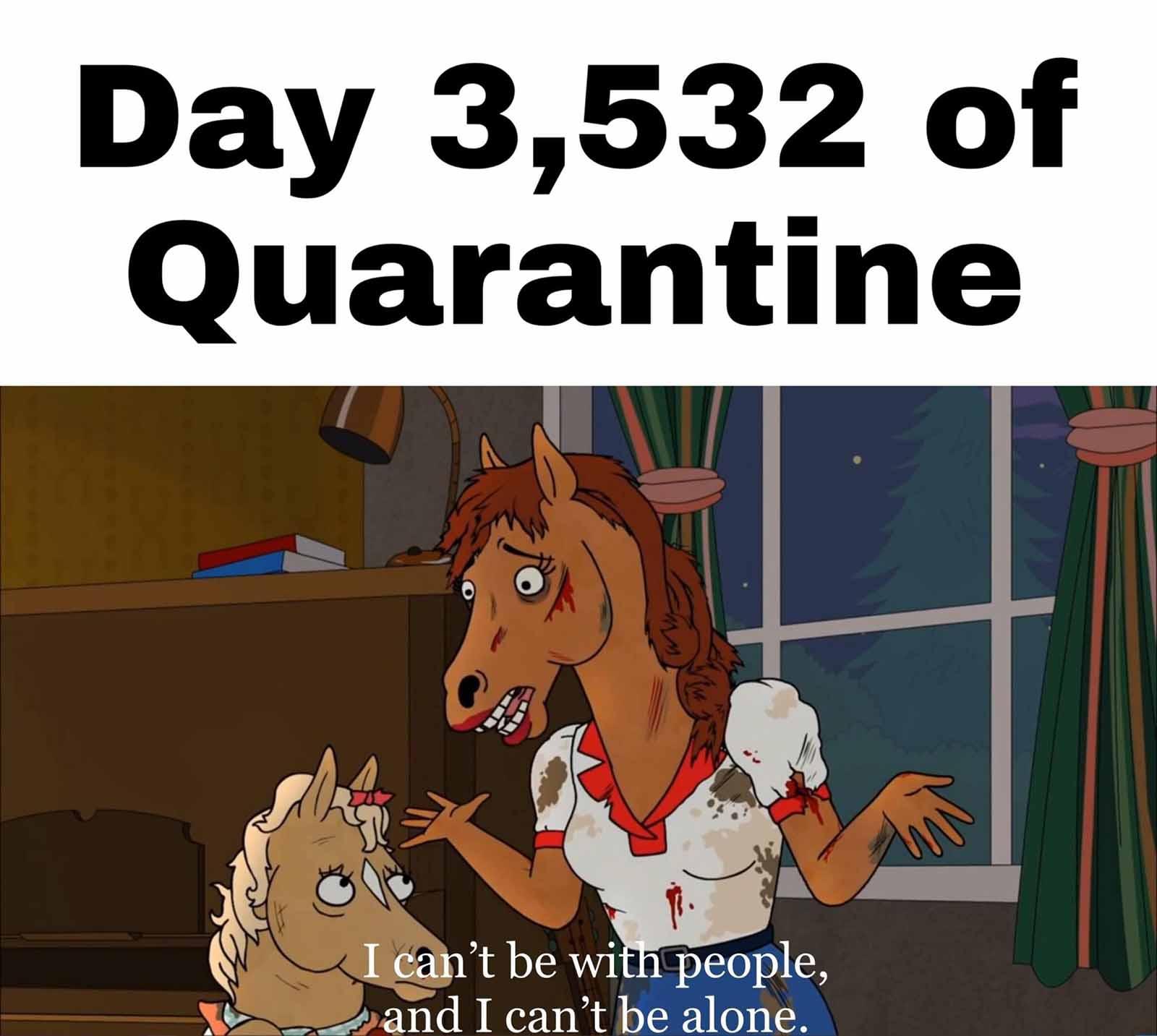Quarantine Article Picture